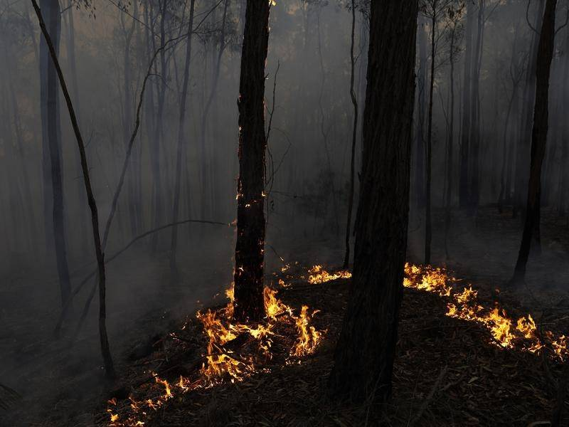 NSW has set aside $192 million to better prepare the state after the Black Summer bushfires.
